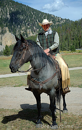 Cowboy op Blauw Roan Paard