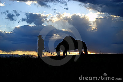Cowboy and pack horse, silhouette