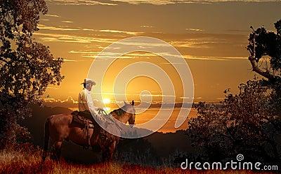 A cowboy riding on his horse VII.
