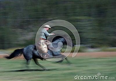 Cowboy Riding Horse #2