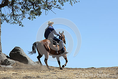 A cowboy riding in a meadow with trees up a mountain with a plain blue sky.