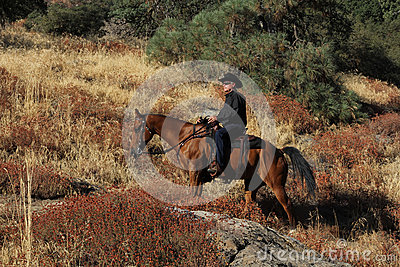A cowboy riding the trails.