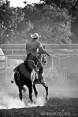 Cowboy in rodeo