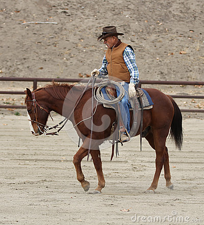 Free Cowboy Training A Horse II. Stock Photography - 29761382
