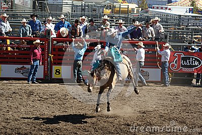 Cowboy Wild Horse Riding Editorial Image