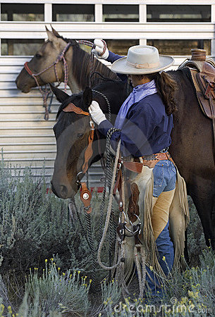 Free Cowgirl And Horses Stock Image - 464901