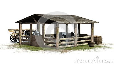 Cows in barn on white background Stock Photo