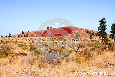 Coyote Butte