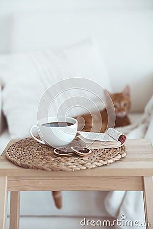 Free Cozy Interior Details Royalty Free Stock Photos - 43797268