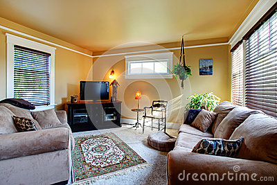 Cozy Living Room With Couch And Tv Royalty Free Stock Image Image
