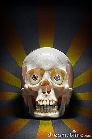 Cráneo el mirar fijamente