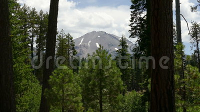 Crête de forêt et de montagne au parc national volcanique de Lassen clips vidéos