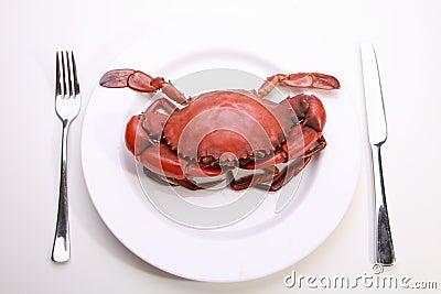 Crabe de plaque