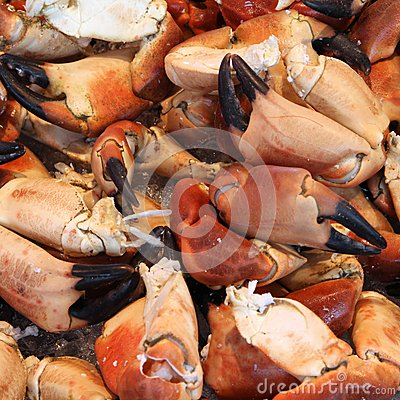 Free Crabs At A Market Royalty Free Stock Images - 37153359