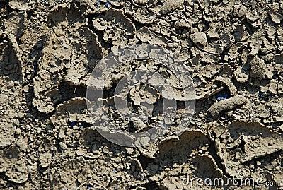 Crack dry soil