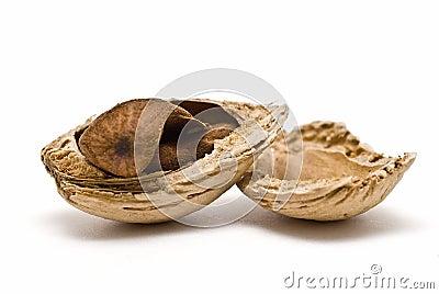 Cracked almond.