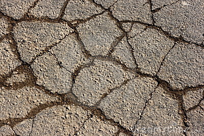 Cracked Asphalt Texture