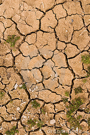 Free Cracked Earth Royalty Free Stock Photography - 665977