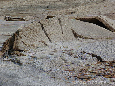 Cracked Earth, Dead Sea Jordan