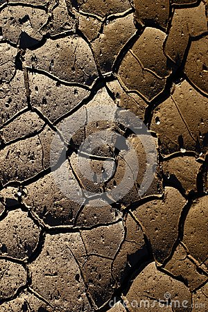 Free Cracked Earth Due To The Heat From The Sun Stock Photo - 103853530