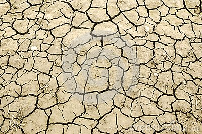 cracked-earth-texture-close-up