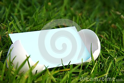 Cracked Egg with Blank Card