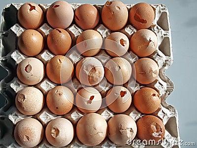 Cracked Eggs Stock Photo - Image: 49283141