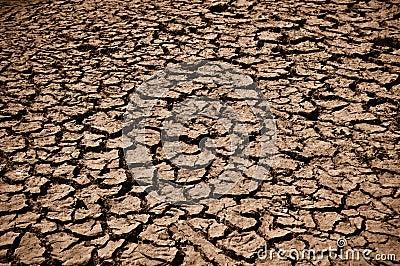 Cracked Ground Dirt