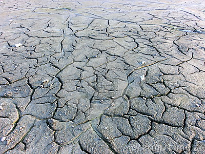 Cracked land of the lake bed