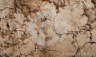Cracked mud wall
