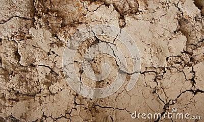 Cracked mud wall