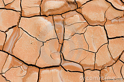 Cracking Earth - Mud