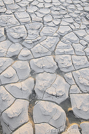 Cracks in Dried Mud