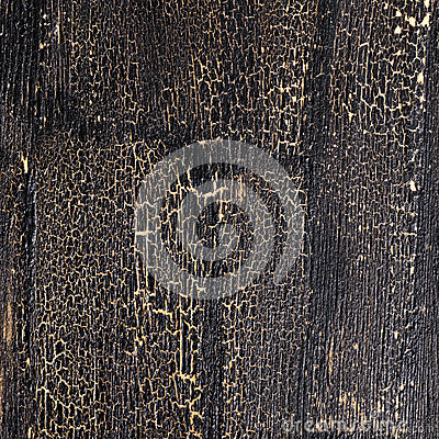 Free Cracks On Black Background, Painted Wooden Surface Royalty Free Stock Photo - 64699255
