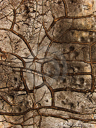 Cracks  roofing   material