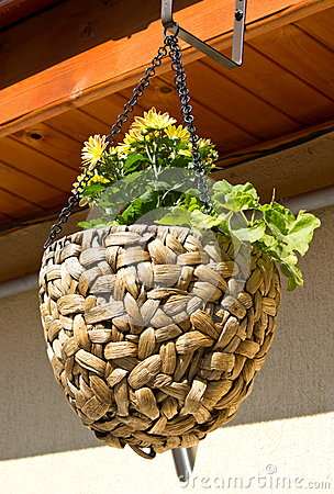 Craft flower pot