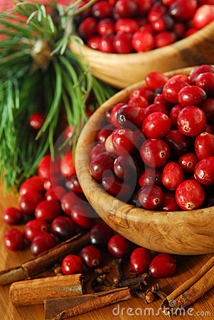 Free Cranberries In Bowls Stock Photos - 3822683