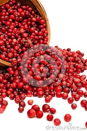 Cranberries spilling close-up