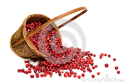 Cranberries spilling from wooden Basket