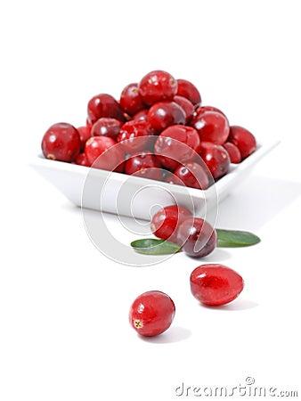 Free Cranberry Stock Photos - 7638503
