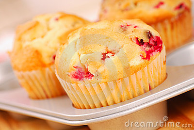 Cranberry muffins in muffin pan