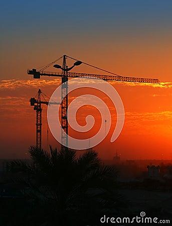 Free Crane Stock Photos - 14375813