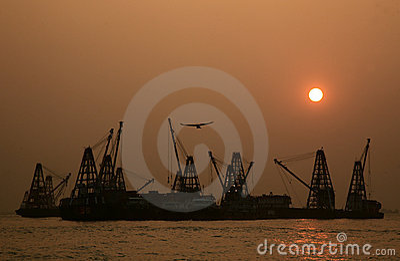 Crane cargo 03