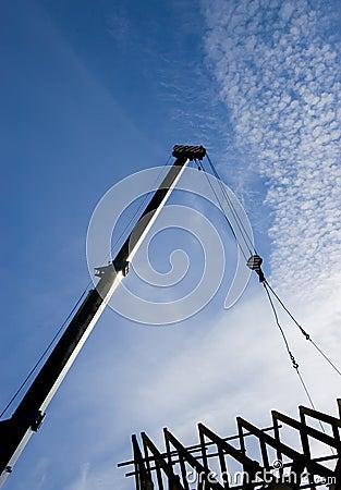 Crane dachowa sylwetka