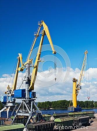 Crane makes loading cargo