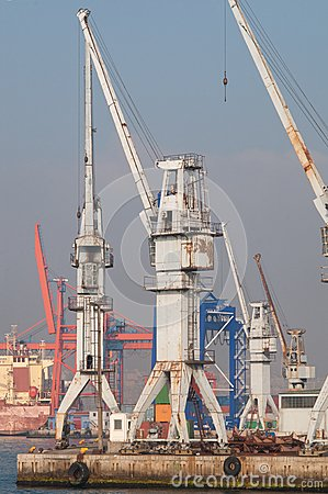 Cranes near the Sea