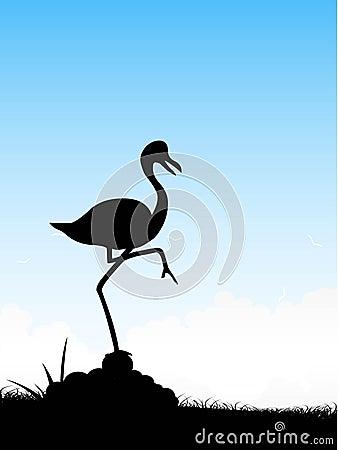 Free Crane On Single Leg Royalty Free Stock Image - 5492806