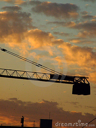 Crane silhouetted at sunset