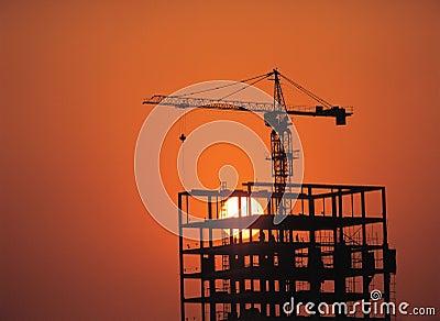 Crane and Sun