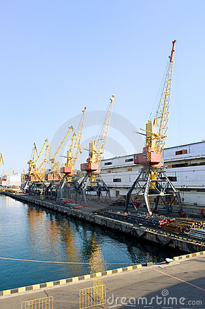 Cranes in the port